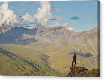 Usa, Alaska, Arctic National Wildlife Canvas Print by Hugh Rose