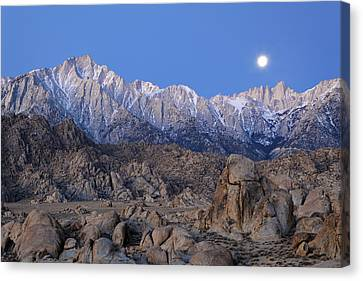 Usa, California Moonset On Lone Pine Canvas Print by Jaynes Gallery