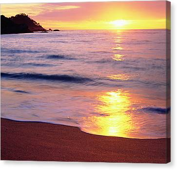 Usa, California, Sunset Canvas Print by Jaynes Gallery