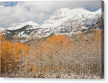 Usa, Colorado, Gunnison National Canvas Print by Jaynes Gallery