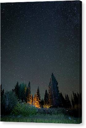 Usa, Colorado Night Sky At Lost Lake Canvas Print by Jaynes Gallery