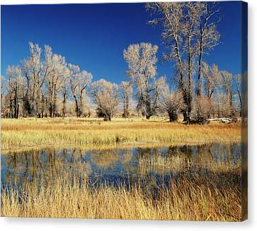 Usa, Evanston, Wyoming, View Canvas Print by Scott T. Smith
