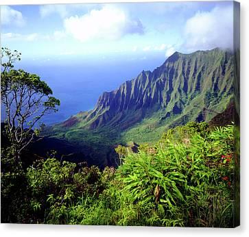 Usa, Kauai, Hawaii Canvas Print by Jaynes Gallery