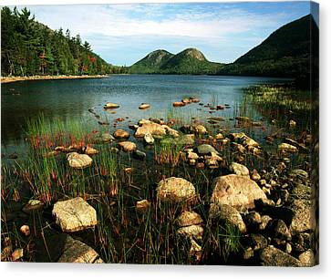 Maine Mountains Canvas Print - Usa, Maine, Acadia National Park, View by Adam Jones