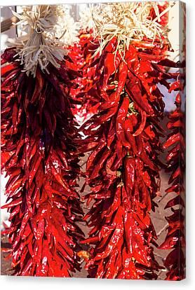 Usa, New Mexico, Sant Fe, Red Chili Canvas Print