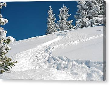 Usa, New Mexico, Santa Fe, Winter Sports Canvas Print