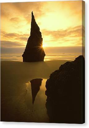 Wayside Canvas Print - Usa, Oregon, Bandon Beach, Sunset by Jaynes Gallery