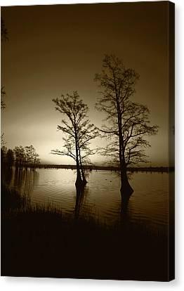 Usa, Tennessee, Reelfoot National Canvas Print by Adam Jones