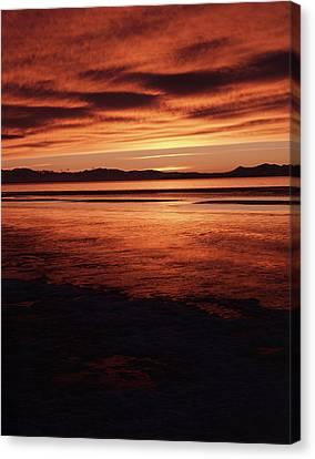 Usa, Utah, Antelope Island, Stansbury Canvas Print by Scott T. Smith