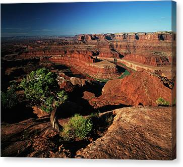 Usa, Utah, Dead Horse Point State Park Canvas Print by Adam Jones