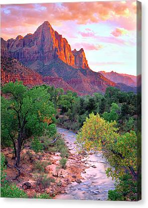 Usa, Utah, Zion National Park At Sunset Canvas Print