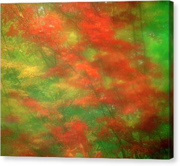 Usa, Vermont Abstract Of Maple Trees Canvas Print by Jaynes Gallery