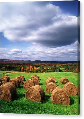 Usa, Vermont, Westmore, Hay Bales Canvas Print by Adam Jones