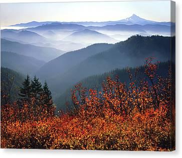 Usa, Washington, Columbia River Gorge Canvas Print by Jaynes Gallery