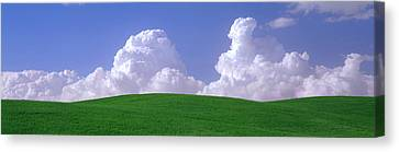 Wa Canvas Print - Usa, Washington, Palouse, Wheat by Panoramic Images