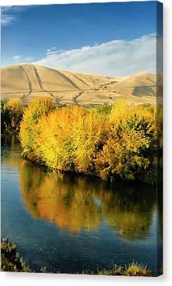 Usa, Washington State, Benton City Canvas Print by Richard Duval