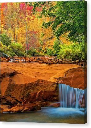 Usa, West Virginia, Douglass Falls Canvas Print by Jaynes Gallery