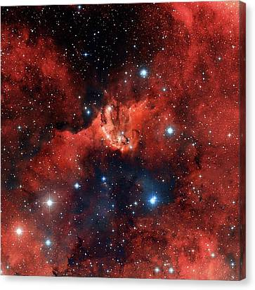 V1318 Cygni Star Cluster Canvas Print by Robert Gendler