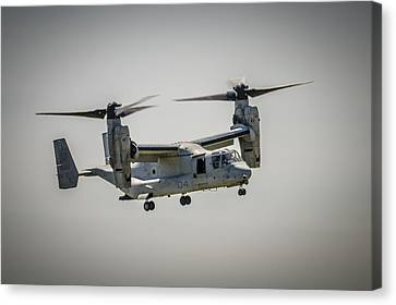 V22 Osprey Canvas Print by Bradley Clay