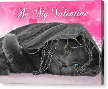 Valentine Cat Canvas Print by Joann Vitali