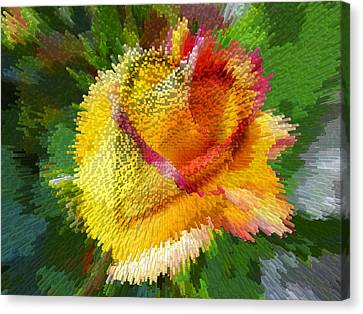 Valentine Rose Canvas Print by Anne Mott