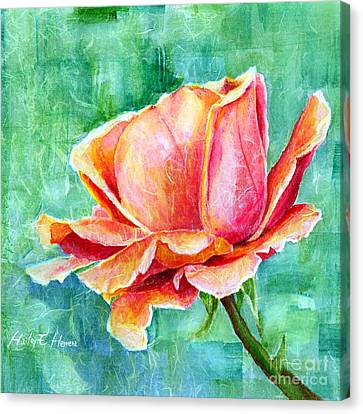 Close Up Canvas Print - Valentine Rose by Hailey E Herrera