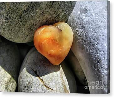 Valentine's Day- Heart Of Stone Canvas Print by Daliana Pacuraru