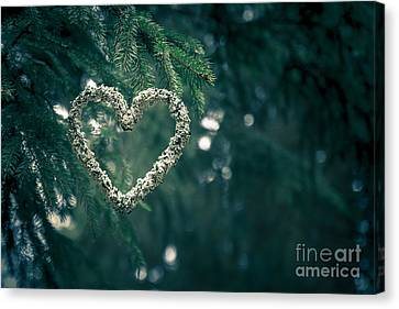Valentine's Day In Nature Canvas Print