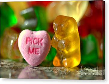 Valentines Day Canvas Print by Kenny Glotfelty