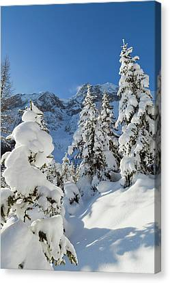 Valley Gaistal With Snow During Deep Canvas Print by Martin Zwick