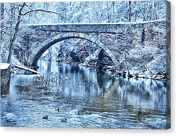 Valley Green Ducks In Winter Canvas Print by Bill Cannon