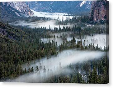Inspiration Point Canvas Print - Valley Mist Yosemite, California by Tom Norring