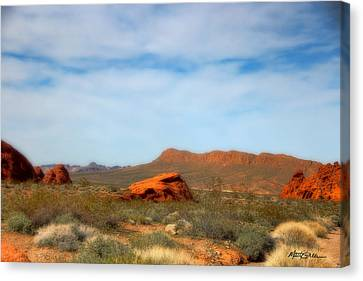 Valley Of Fire Canvas Print by Marti Green