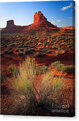 Wavy Canvas Print - Valley Of The Gods by Inge Johnsson