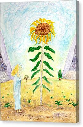 Valley Of The Mammoth Sunflowers Canvas Print