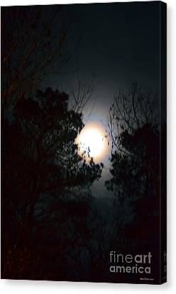 Valley Of The Moon Canvas Print by Maria Urso