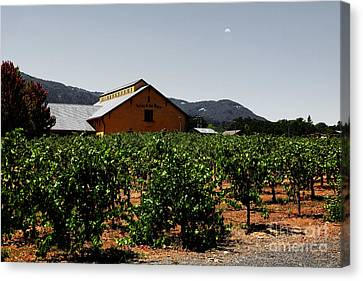 Napa Valley And Vineyards Canvas Print - Valley Of The Moon Sonoma California 5d24485 V2 by Wingsdomain Art and Photography