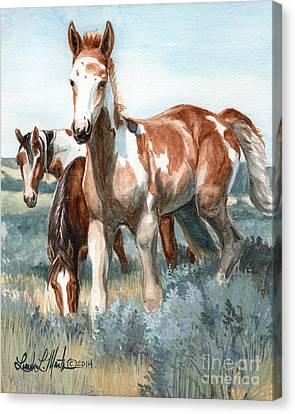 Van Gogh Of Sand Wash Basin Colorado Canvas Print