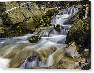 Van Trump Creek Mount Rainier National Park Canvas Print by Bob Noble Photography