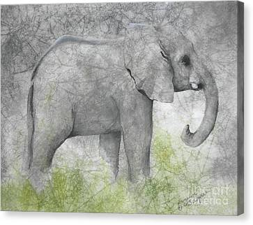 Vanishing Thunder Series-baby Elephant II  Canvas Print by Suzanne Schaefer