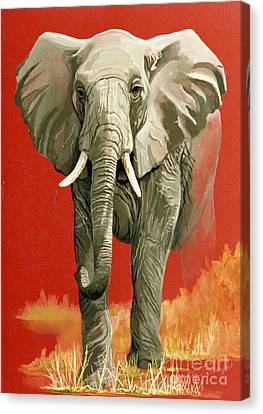 Vanishing Thunder Series Canvas Print by Suzanne Schaefer