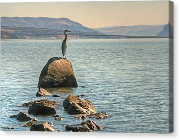 Vantage Point Canvas Print by Jeff Cook