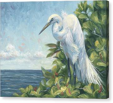 Sea Birds Canvas Print - Vantage Point by Lucie Bilodeau