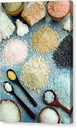 White Maltese Canvas Print - Various Types Of Salt by Nico Tondini