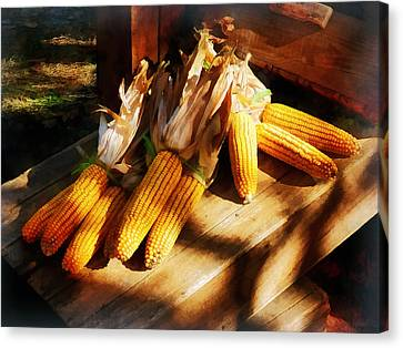 Vegetable - Corn On The Cob At Outdoor Market Canvas Print by Susan Savad