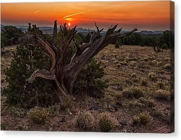 Veiled Sunrise Canvas Print by Jennifer Grover