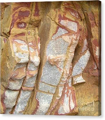 Veined Rock Canvas Print by Barbie Corbett-Newmin