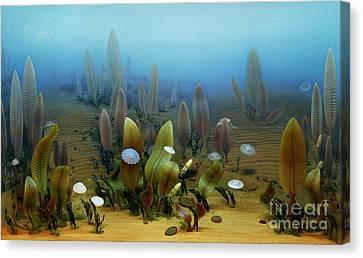 Vendian Marine Life Canvas Print by Chase Studio