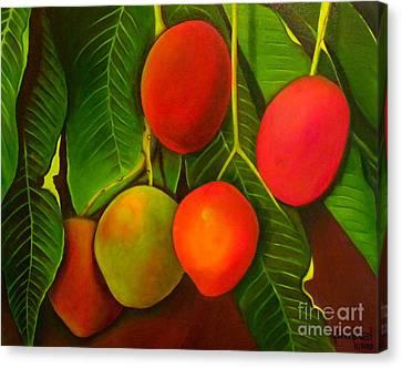 Venezuelan Mangos Canvas Print by Fanny Diaz