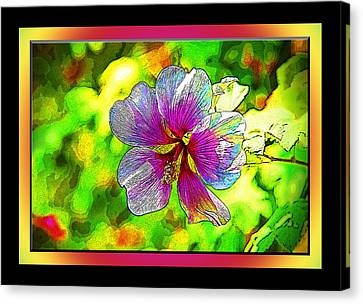Venice Flower - Framed Canvas Print by Chuck Staley